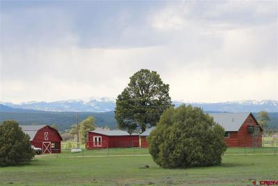 Pagosa Springs Single Family Home For Sale: 555 Paciente Place
