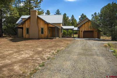 Pagosa Springs Single Family Home UC/Contingent/Call LB: 1994 S Pagosa Blvd