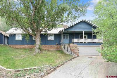 Durango Single Family Home For Sale: 2603 N College Drive