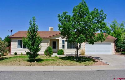 Montrose Single Family Home For Sale: 1997 Sara E Lane