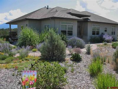 Crawford, Hotchkiss, Paonia Single Family Home For Sale: 34499 Fruitland Mesa Road