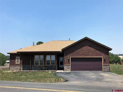 Pagosa Springs Single Family Home For Sale: 7080 N Pagosa Boulevard