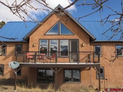 Ridgway Single Family Home For Sale: 199 Valley View Road