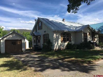 La Plata County Single Family Home For Sale: 2060 E 2nd Avenue