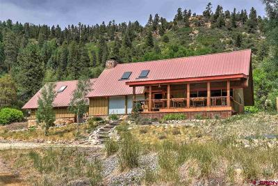 La Plata County Single Family Home For Sale: 1798 Cr 207