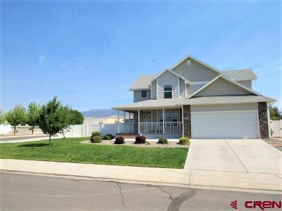 Delta CO Single Family Home For Sale: $259,000