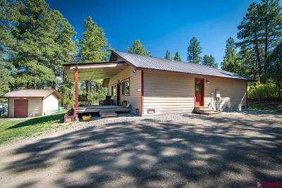 Pagosa Springs Single Family Home For Sale: 1290 Ute Drive