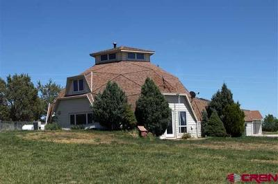 La Plata County Single Family Home UC/Contingent/Call LB: 10 Morning Glory Ave