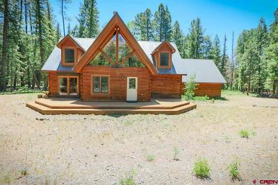 Pagosa Springs Single Family Home For Sale: 57 Godfrey Court