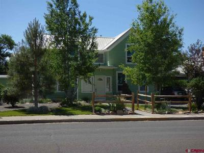 Montrose Single Family Home For Sale: 134 S 2nd Street
