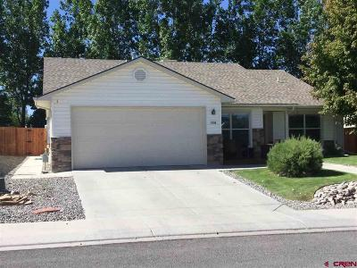 Montrose Single Family Home For Sale: 1508 Animas Street