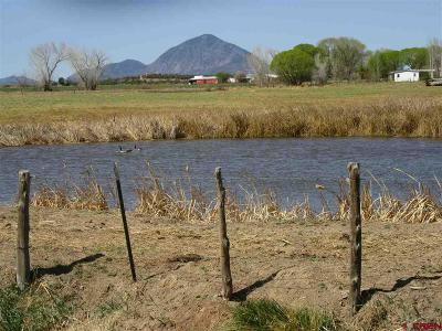 Montezuma Farm For Sale: Road L (114.26 Ac)