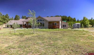 Pagosa Springs Single Family Home UC/Contingent/Call LB: 377 Horseshoe Circle