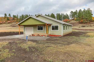 Pagosa Springs Single Family Home For Sale: 295 Hills Circle