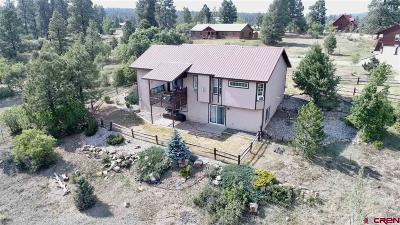 Pagosa Springs Single Family Home For Sale: 100 Monte Vista Drive