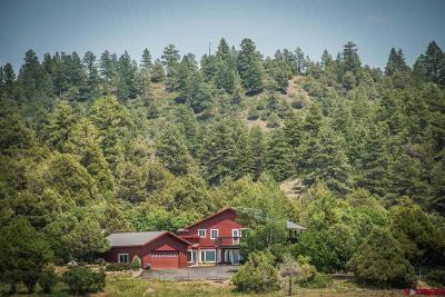 Pagosa Springs Single Family Home For Sale: 218 Spring Court