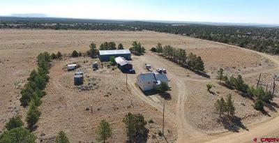 Hesperus Single Family Home For Sale: 2903 County Road 113