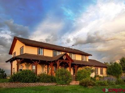 Pagosa Springs Single Family Home For Sale: 130 Echo Creek Court