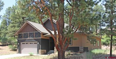 La Plata County Single Family Home For Sale: 85 Clear Creek Loop