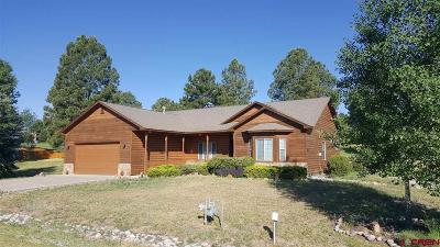 Pagosa Springs Single Family Home For Sale: 112 Pines Club Drive