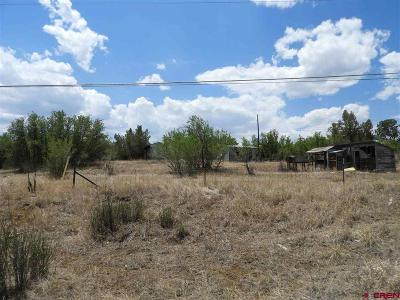Durango Residential Lots & Land For Sale: 439 Cr 232