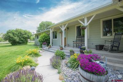 Montrose Single Family Home UC/Contingent/Call LB: 13424 6100 Road