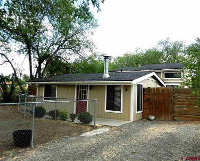 Montrose Single Family Home UC/Contingent/Call LB: 740 S 5th Street