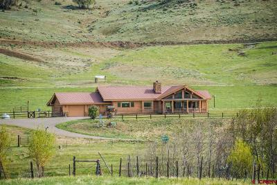 Pagosa Springs Single Family Home For Sale: 778 County Road 382