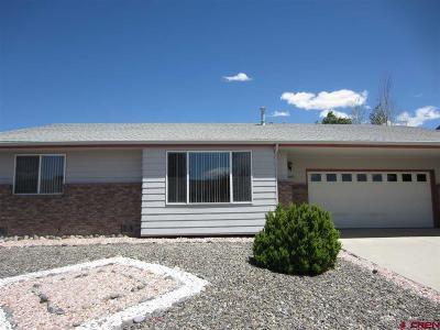 Montrose Single Family Home NEW: 2055 James