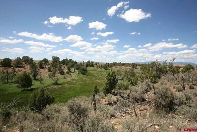Hesperus Residential Lots & Land For Sale: 2591 Cr 131