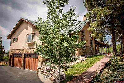 Pagosa Springs Single Family Home For Sale: 117 Oxbow Circle