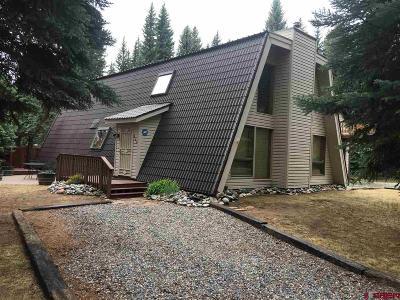 La Plata County Single Family Home For Sale: 299 Decker Dr.