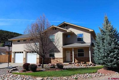 La Plata County Single Family Home For Sale: 898 Waterfall Lane