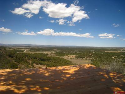 Mancos Residential Lots & Land For Sale: 9627 Road 35
