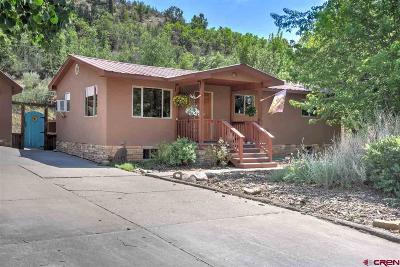 Durango Single Family Home For Sale: 908 Oak Drive