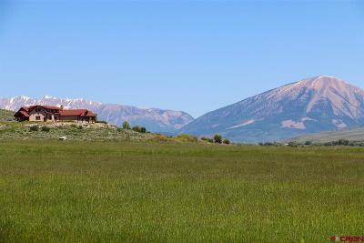 Gunnison County Single Family Home For Sale: 1141 County Road 818