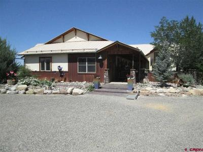 Montrose Single Family Home For Sale: 69867 Miguel Road
