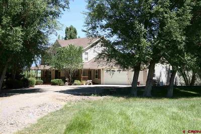 Delta CO Single Family Home NEW: $898,500