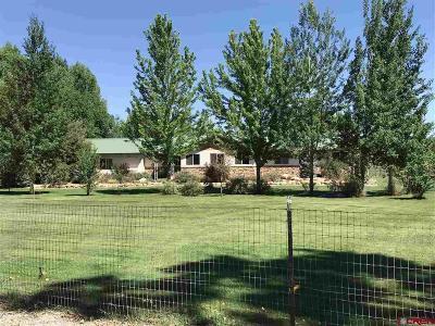 Montrose Single Family Home NEW: 61395 Niagara Road