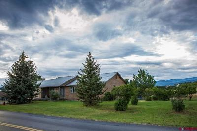 Bayfield Single Family Home For Sale: 385 Sossaman Rd.