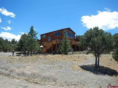 South Fork Single Family Home For Sale: 1030 Pinon Hill Road