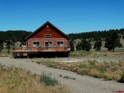 Pagosa Springs Single Family Home For Sale: 1029 Loma Linda Drive