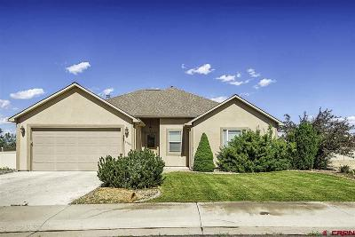 Montrose Single Family Home For Sale: 1724 Election Way