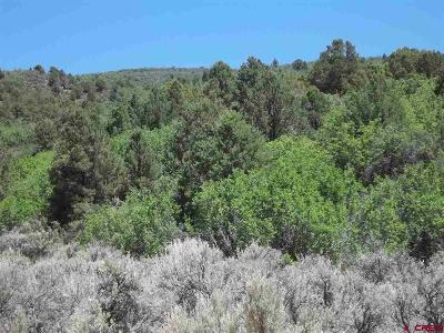 Cedaredge Residential Lots & Land For Sale: Current Creek Road