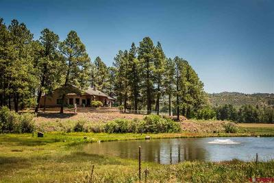 La Plata County Single Family Home For Sale: 516 Cr 505