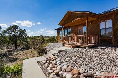 Durango Single Family Home NEW: 171 Etta Place