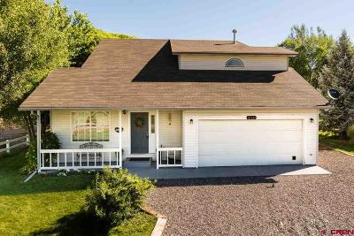 Montrose Single Family Home UC/Contingent/Call LB: 65635 Kail Court