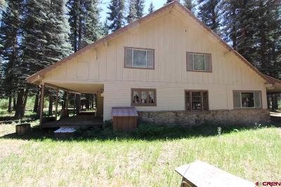 Bayfield Single Family Home NEW: 387 W Grimes Creek Road