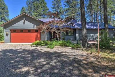 La Plata County Single Family Home NEW: 624 W Los Ranchitos Drive
