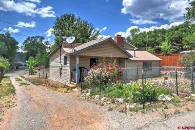 La Plata County Single Family Home NEW: 3180 E 6th Avenue